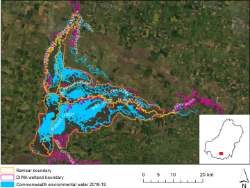 Barmah Forest Ramsar site inundation by Commonwealth environmental water in 2018/19