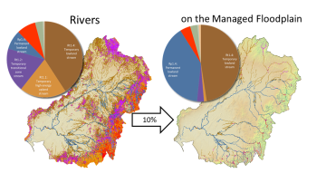 ANAE river ecosystem types in the Murray-Darling basin as a whole and on the managed floodplain